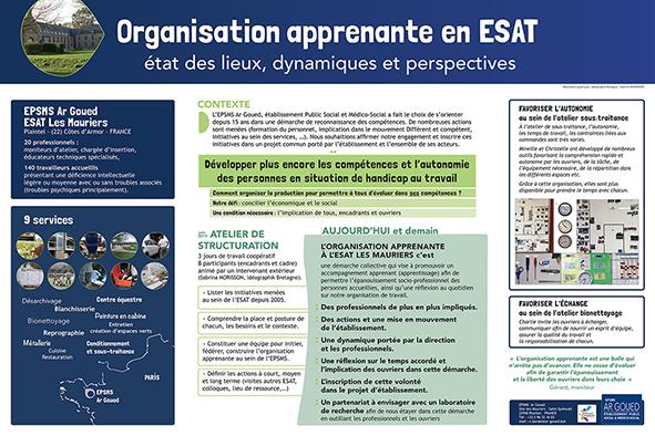 vignette du poster résumant les ateliers structuration de l'organisation apprenante