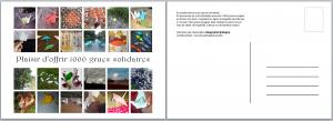 Carte postale à télécharger, réalisée à partir des photos envoyées par les participants au défi 1000 grues.